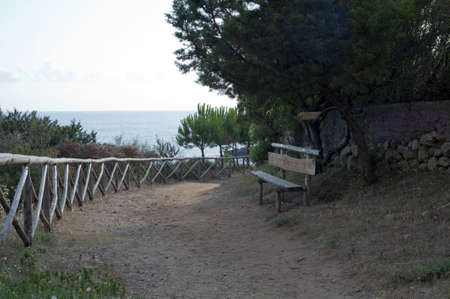 Bench along the path to the seaside photo