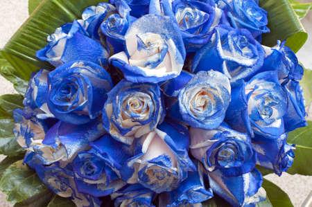 Ver fotos de ramos de rosas azules - Imagui
