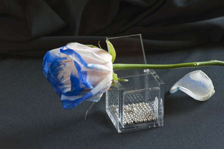 favor:  A blue rose on a knick-knack over a black texture