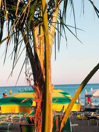 beachfront: Beachfront resort