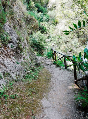 mountaintop: Path to the mountaintop Stock Photo
