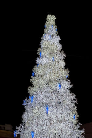 gewgaw: Christmas tree in the street Stock Photo