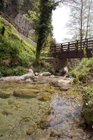 Forest with a wooden bridge over the spring of a river. Casaletto Spartano, Salerno Italy.
