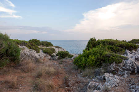 Solitary path among vegetation. Afterglow of the sunset over the wild littoral of Marina di Camerota, Italy, Europe. Banque d'images
