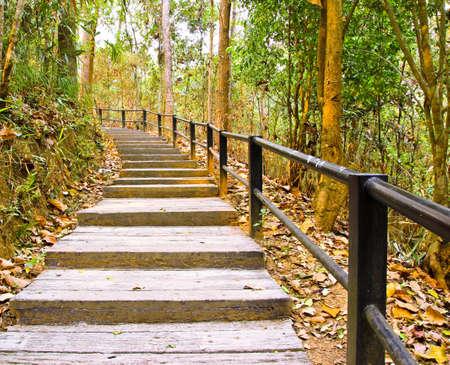 Stairway Stock Photo - 13085422