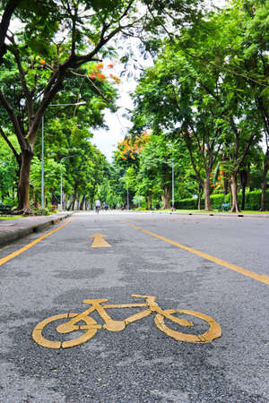Bicycle path in the park photo