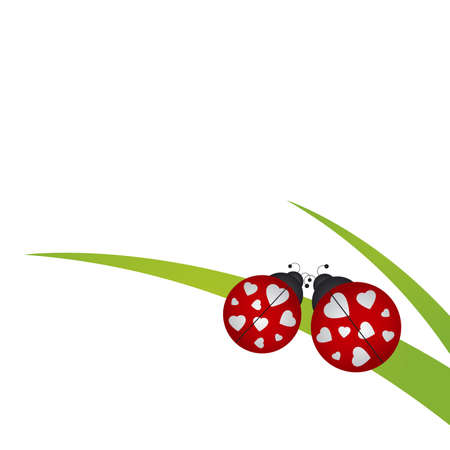Ladybug on grass Illustration