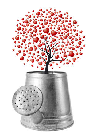 Heart tree in the water can Stock Photo - 17426096