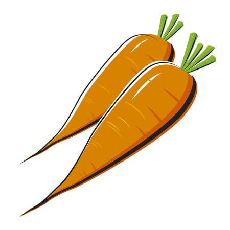 carrots isolated: Fresh carrots isolated Illustration