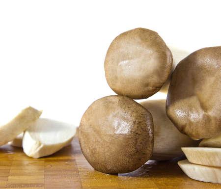 King Oyster Mushroom photo