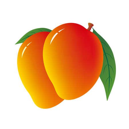 venereal: Mango on white background