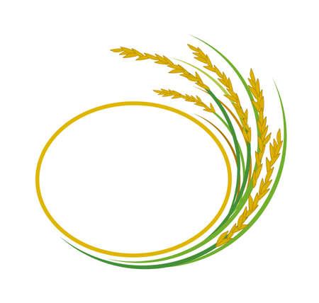 rice plant: Rice design on white background