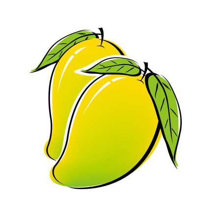 mango fruta: Dise�o de mango en el fondo blanco