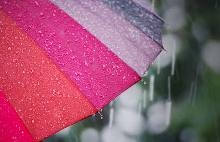 Close up umbrella in rainy day