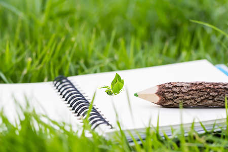 describe: Pencil and butterfly design on notebook in the garden