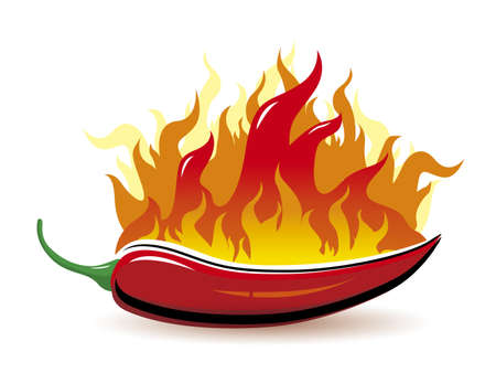 hot pepper: Vector red hot chilli pepper with fire on white background Illustration