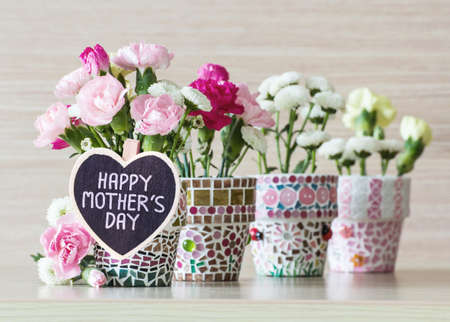 flower in pot: Happy mothers day Stock Photo