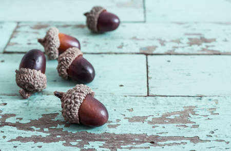antiquated: Acorn on vintage wooden background Stock Photo