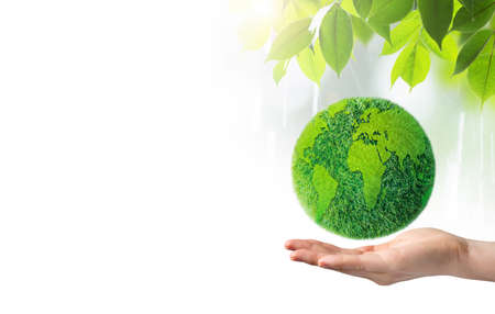 green world: Green earth in hand on white background
