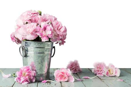 白い背景の上の亜鉛バケツ ピンクのカーネーションの花 写真素材