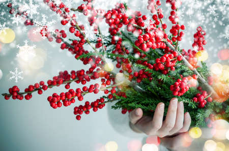 showy: Christmas and new year concept design of woman hands holding ilex verticillata or winterberry with snow and light bokeh Stock Photo