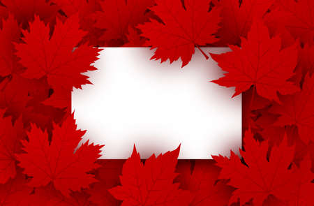 Canada day design of blank white paper and red maple leaves background with copy space vector illustration