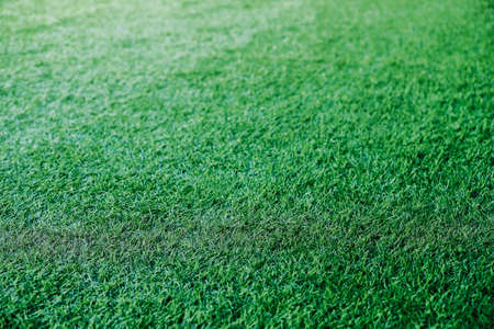 Green grass texture background Soccer field