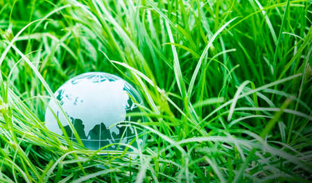 Earth day concept of globe on green grass with copy space Stockfoto