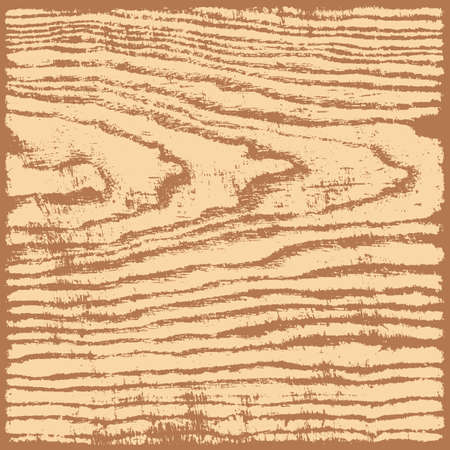 wood structure: Beige brown wood texture background in square format. Realistic plank with annual years circles. Empty natural pattern swatch template. Vector illustration design elements save in 8 eps