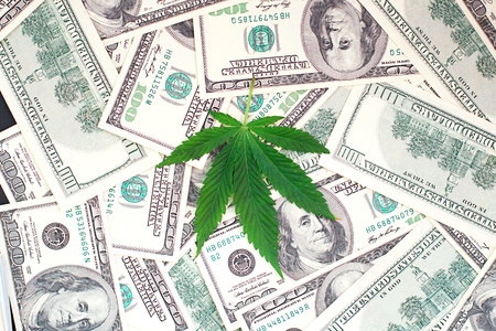 Green cannabis leaf and American money, background image. Thematic photos of hemp and marijuana. Concept of business, medicines