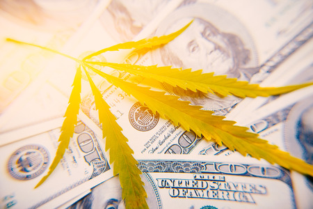 Money with sheet of marijuana close-up on background of one hundred dollars with an artificial ray of light, high quality image. Thematic photos of hemp and cannabis