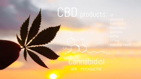CBD Cannabis product. Medical Marijuana and Cannabidiol CBD chemical formula. Thematic photos of growing hemp and ganja. Background image