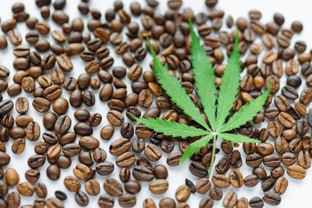 Coffee beans with marijuana leaves background top view.  Green cannabis leaf on coffee beans background with place for copy space Banco de Imagens