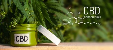 Hemp cream and oil balm with cannabis leaf with the image of the formula CBD cannabidiol. Hand cream of biological and ecological hemp plant herbal pharmaceutical CBD oil from a jar. Marijuana product