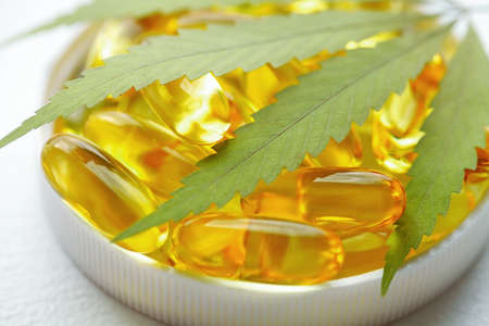 Cannabis oil capsule concept, CBD oil capsules and hemp leaves. Macro close up of capsules of biological and ecological hemp plant herbal pharmaceutical
