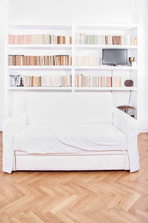 Home library with sofa or couch. Clean and modern decoration, white living room with modern wooden white bookshelf and different books inside, domestic atmosphere, library background indoors photo