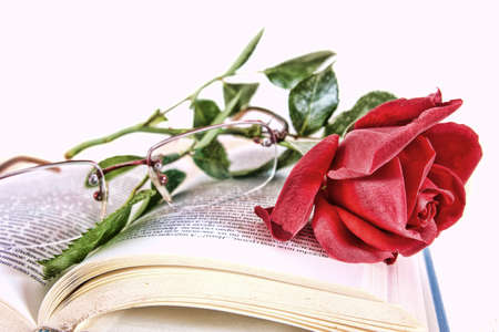Open book and red rose with glasses on pages of book, romantic vintage look, poetry concept