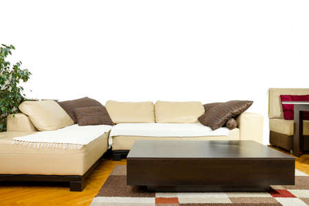 carpet and flooring: Empty Living room with angular sofa, dinner-wagon, plant, curtains, vase, carpet and flooring. Interior in modern and classic design, friendly furniture layout. Corner sofa with perfect schedule, Stock Photo
