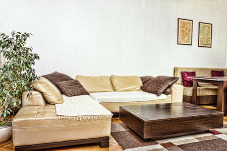 corner of house: Living room or interior with  modern and stylish design with sofa corner with cushions and low contemporary table. Concept of a pleasant and relaxing schedule of home indoor furniture.Strong contrasts