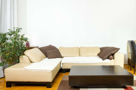 carpet and flooring: Empty Living room with angular sofa, dinner-wagon, plant, curtains, vase, carpet and flooring. Interior in modern and classic designed style. Stock Photo