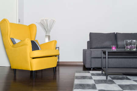 antique chair: Classical Style Yellow Armchair and Graceful Modern Gray Sofa Couch in Vintage Room with Fashion Lamp and Carpet in the Form of Chess Table. Stock Photo