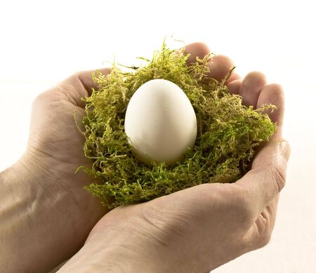 cradling: two hands cradling an egg in a nest