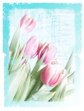 汚れた花の背景 写真素材