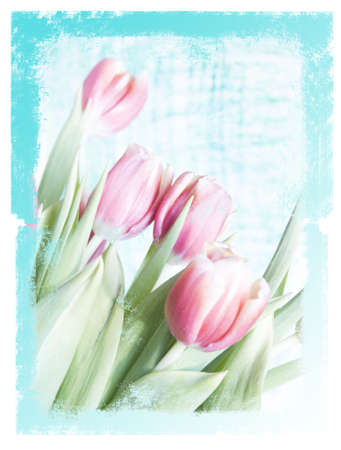 grungy floral background photo