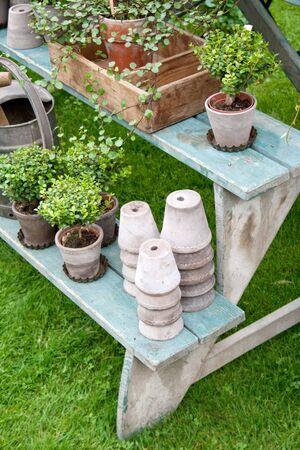 romantic autumn garden setup with a rustic feel