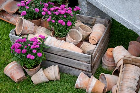 Old rustic plant pots for gardening photo