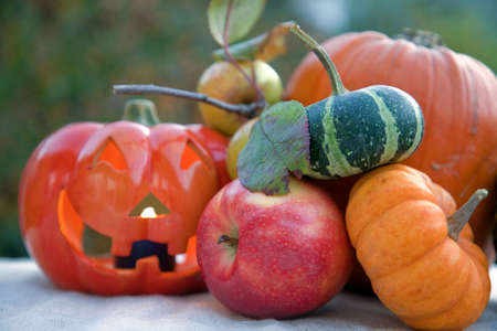 Still life with lovely pumkins and a jack o lantern Stock Photo