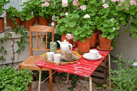 Romantic tea break in the greenhouse