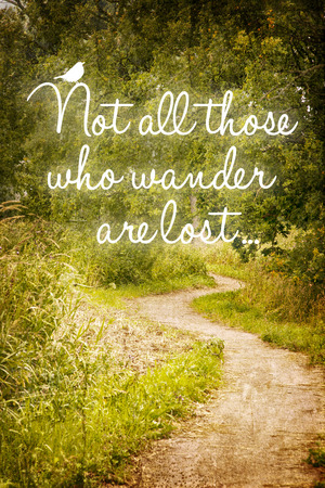 wander: Inspirational quote all those who wander, on a background of a path in the forrest.