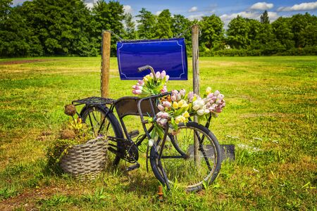 sign post: Image of a vintage bicycle with flowers and a mtal sign.